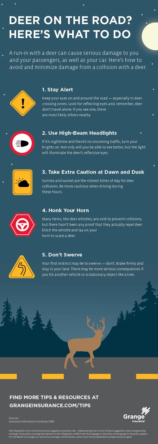 deer collision infographic